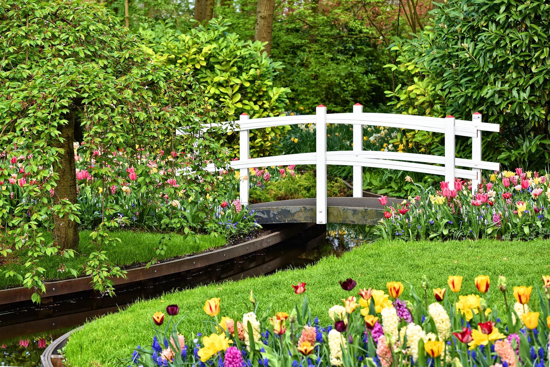 Comment Faire Un Beau Jardin quelques idées pour avoir un beau jardin │ ma belle maison